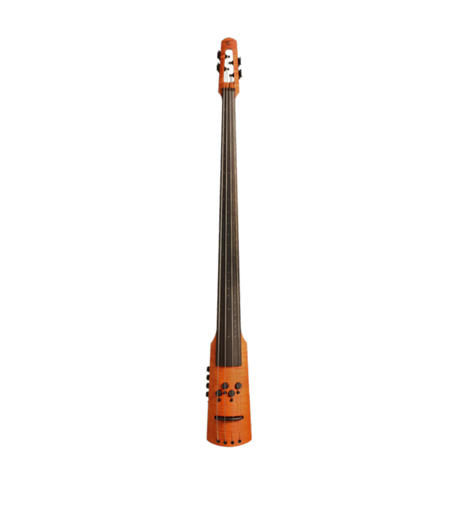 NS Electric Double Bass 4 string